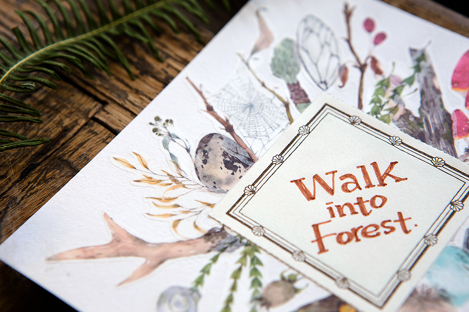 森林採集紙膠帶-野地足跡系列
