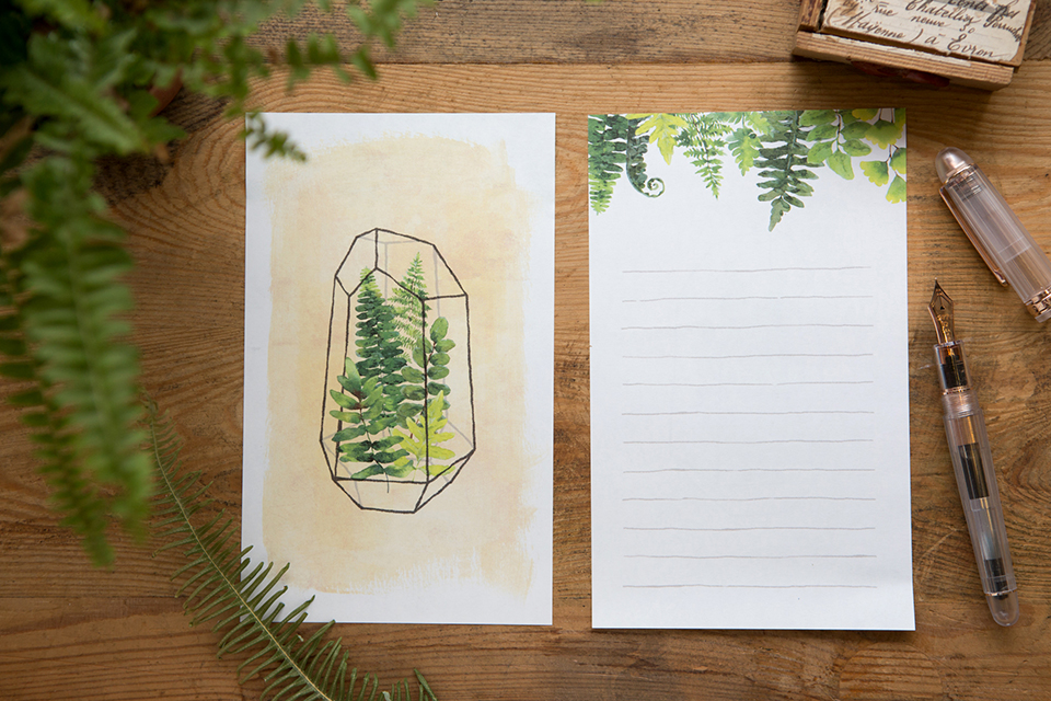 信紙組 - 蕨類