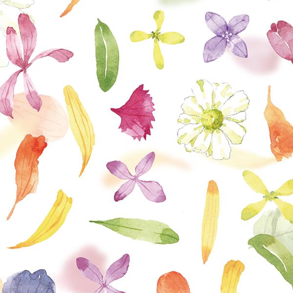 Flowers MIJ Washi Sticker