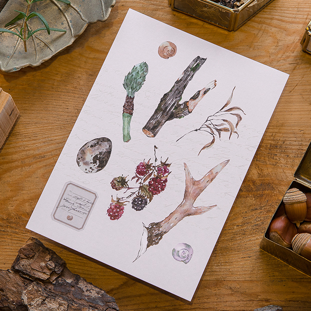 森林採集明信片 - 鹿角與野莓