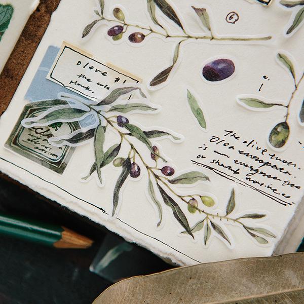 Olive Sticker Pack